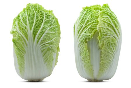 Chinese cabbage isolated on white background Banco de Imagens