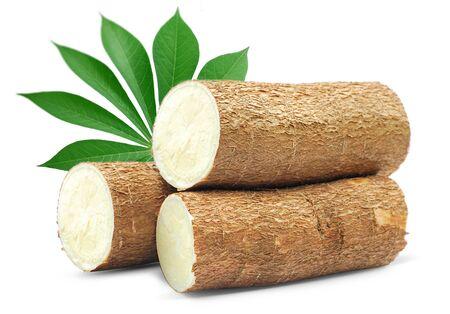 Cassava isolated on white background