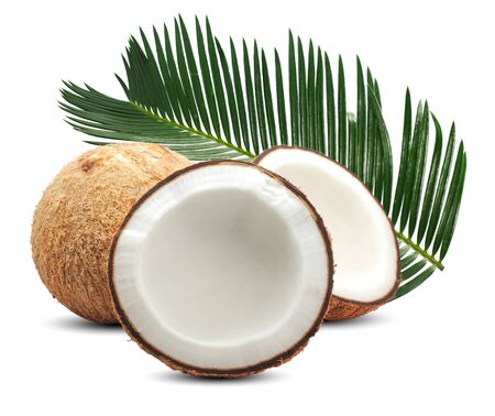 Coconut palm fruit isolated on white background Banco de Imagens