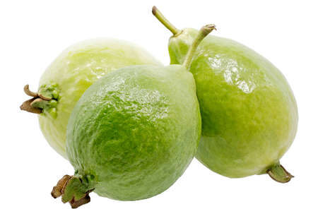 Guava fruits isollated on white background Standard-Bild