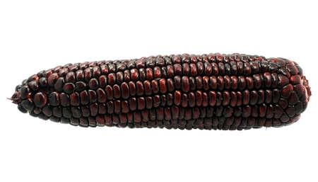 Black Corn isolated on white background