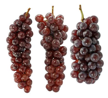 Champagne grape on white background 免版税图像