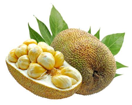 Jackfruit isolated on white background