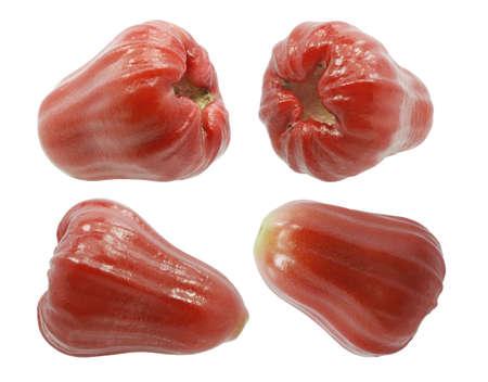 rose apple fruit (Water apple) isolated on white background 免版税图像