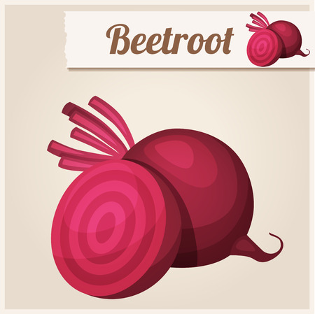 beet root: Beetroot. Detailed Vector Icon