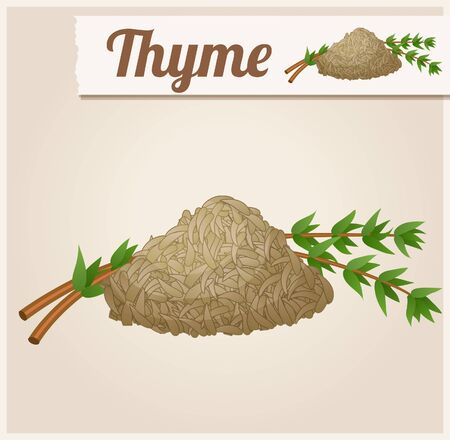 icon series: Dried thyme. Detailed Vector Icon. Series of food and drink and ingredients for cooking.