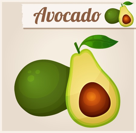 Avocado. Detailed Vector Icon. Series of food and drink and ingredients for cooking. Çizim