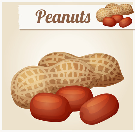 icon series: Peanuts. Detailed Vector Icon. Series of food and drink and ingredients for cooking.