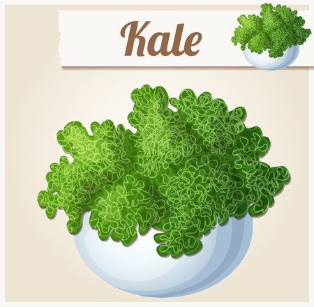 kale: Kale in bowl. Detailed Vector Icon. Series of food and drink and ingredients for cooking.