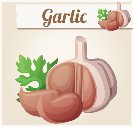garlic clove: Garlic. Detailed Vector Icon. Series of food and drink and ingredients for cooking.