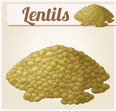 Lentils. Detailed Vector Icon. Series of food and drink and ingredients for cooking.