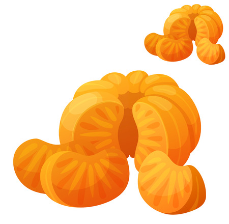 mandarins: Mandarin. Detailed Vector Icon isolated on white background. Series of food and drink and ingredients for cooking.