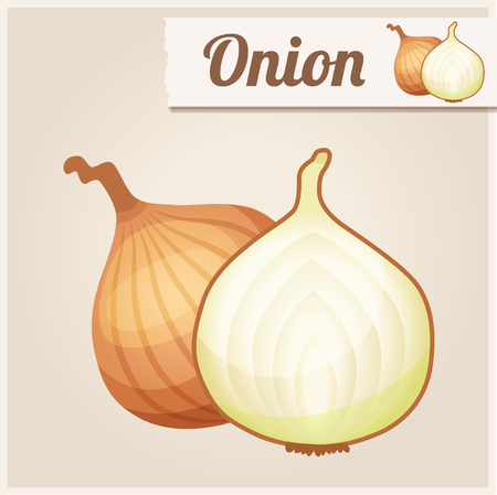 Detailed Food Icon Onion.