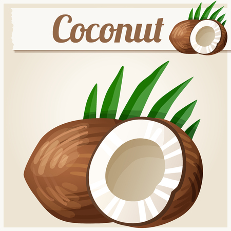 coconut drink: Coconut. Detailed Vector Icon. Series of food and drink and ingredients for cooking.