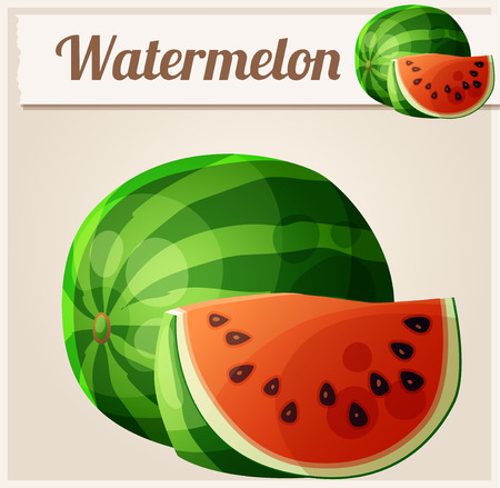eating fruit: Watermelon. Cartoon vector icon. Series of food and drink and ingredients for cooking.