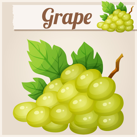 fruit cartoon: White grape. Cartoon vector icon. Series of food and drink and ingredients for cooking.