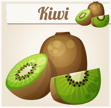 tropical fruit: Kiwi. Icon. Series of food and drink Illustration
