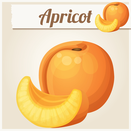 icon series: Apricot.  Cartoon icon. Series of food and drink