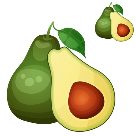 Avocado . Cartoon icon isolated on white background. Series of food and fruits