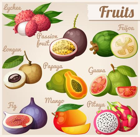 Conjunto de iconos de los alimentos de dibujos animados. frutas exóticas. Lichi (lichi), fruta de la pasión, feijoa, longan, papaya (papaya), guayaba, higo, mango, pitaya (fruta de dragón)