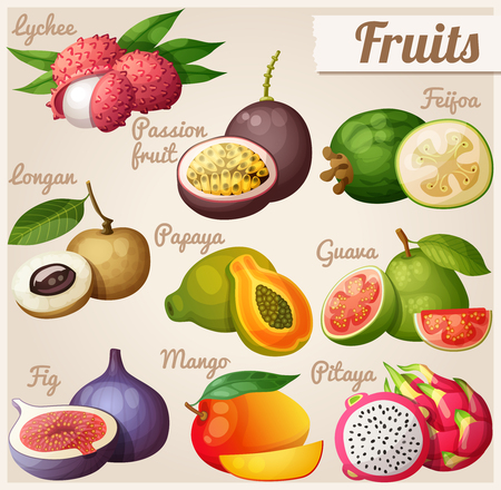Set van cartoon voedsel pictogrammen. Exotische vruchten. Lychee (litchi), passievrucht, feijoa, longan, papaya (papaja), guave, vijgen, mango, pitaya (dragon fruit)
