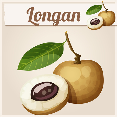 icon series: Longan fruit. Cartoon icon. Series of food and drink and ingredients for cooking. Illustration