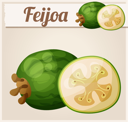 icon series: Feijoa fruit. Cartoon icon. Series of food and drink and ingredients for cooking.
