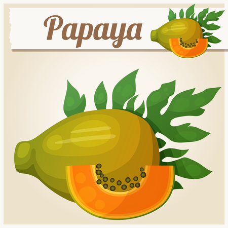 fiambres: Papaya fruit. Cartoon vector icon. Series of food and drink and ingredients for cooking.
