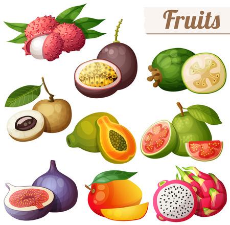 漫画の食べ物アイコンのセットです。エキゾチックなフルーツは、白い背景で隔離。ライチ (レイシ)、パッション フルーツ、フェイジョア、リュウガン、パパイヤ (パパイヤ)、グァバ、イチジク、マンゴー、ピタヤ (ドラゴン フルーツ)