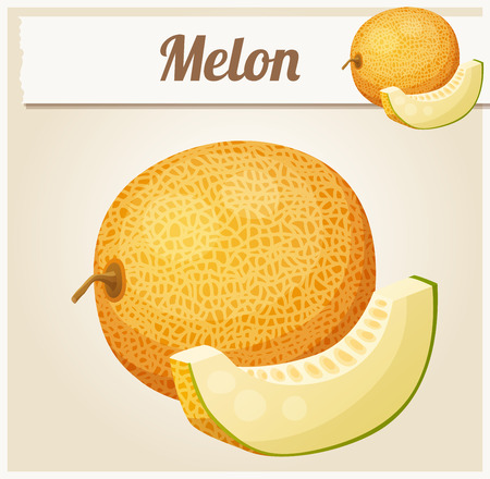 Melon. Cartoon icon. Series of food and drink and ingredients for cooking.