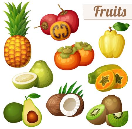exotic fruits: Set of cartoon food icons isolated on white background. Exotic fruits. Pineapple (ananas), tamarillo, quince, persimmon, papaya (pawpaw), pomelo, avocado, coconut, kiwi