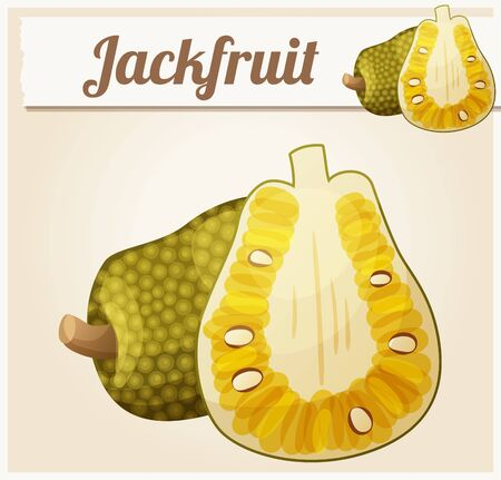 thailand food: Jackfruit illustration. Cartoon vector icon. Series of food and drink and ingredients for cooking.
