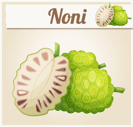 icon series: Noni fruit illustration. Cartoon vector icon. Series of food and ingredients for cooking.