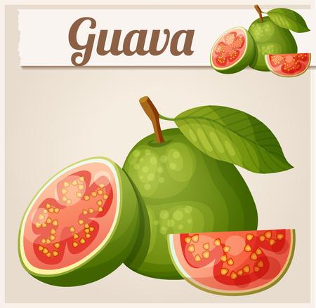 Guava fruit. Cartoon vector icon Illustration