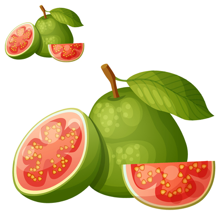 Guava fruit. Cartoon vector icon isolated on white background. Series of food and drink and ingredients for cooking. Illusztráció