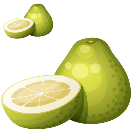 Pomelo fruit. Cartoon vector icon isolated on white background. Series of food and drink and ingredients for cooking. Illusztráció