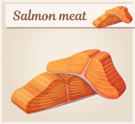 Salmon meat icon. Cartoon vector illustration. Series of food and drink and ingredients for cooking