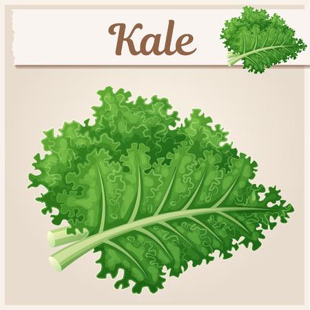 Grünkohl-Gemüse-Symbol. Cartoon-Vektor-Illustration. Reihe von Speisen und Getränken und Zutaten zum Kochen