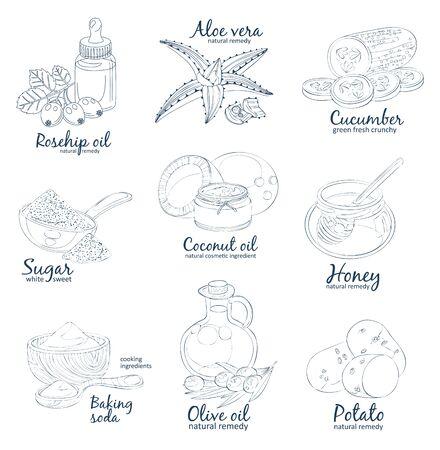 Facial mask ingredients for home face skin care. Illustration