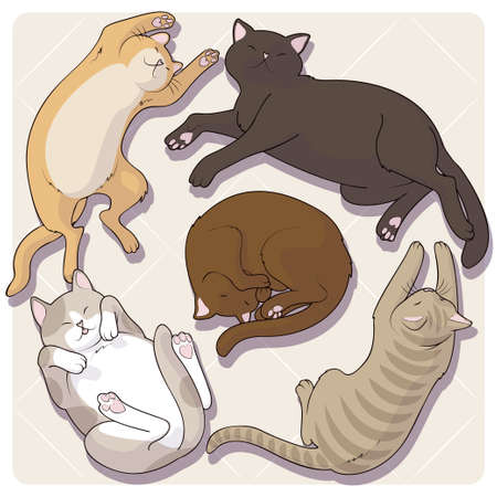 Collection of cute cartoon cats in various poses. Vector illustration