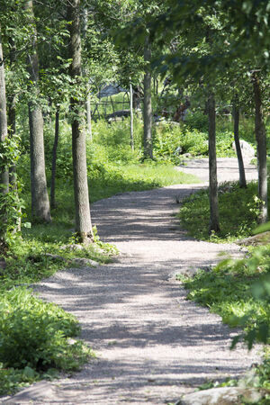 winding path Stock Photo