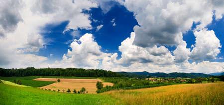 Spring landscape - green fields, the blue sky Stock Photo - 5219003