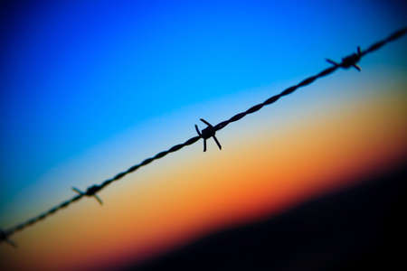 close-up of barbed wire dripping on sunset sky Stock Photo - 5468296