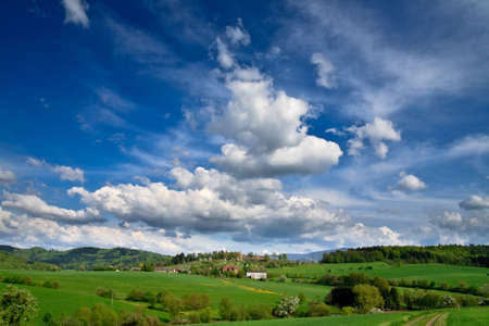 Spring landscape - green fields, the blue sky Stock Photo - 5474910