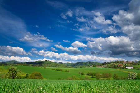 Spring landscape - green fields, the blue sky Stock Photo - 5474907