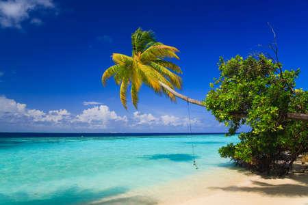 blue lagoon: Paradiso tropicale alle Maldive con palme e cielo blu  Archivio Fotografico