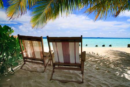 몰디브에서 하얀 모래와 푸른 하늘이있는 녹색 야자수로 열대 낙원에서 휴식을 취하십시오.