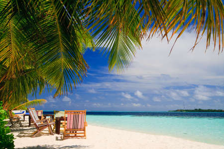 Relaxing on tropical paradise with white sand at Maldives and green palms with blue sky Stock Photo - 5885026