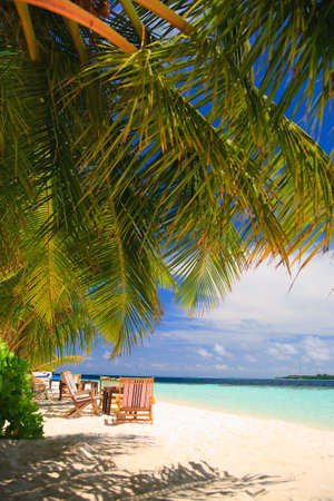 Relaxing on tropical paradise with white sand at Maldives and green palms with blue sky Stock Photo - 5885023