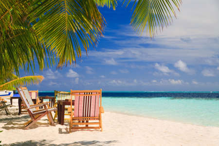 Relaxing on tropical paradise with white sand at Maldives and green palms with blue sky
